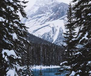snow, mountain, and winter image