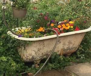 bathtub, flowers, and nature image