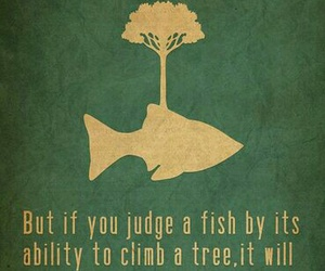 quotes, fish, and genius image