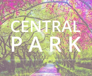 font, Central Park, and easel image