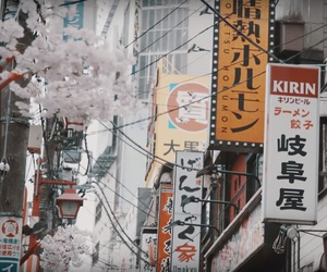billboards, japan, and cherryblossom image