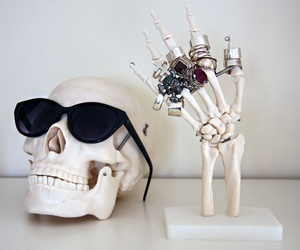 skull, rings, and sunglasses image
