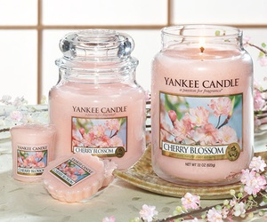 yankee candle, candle, and pink image