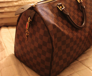 bag, Louis Vuitton, and brown image