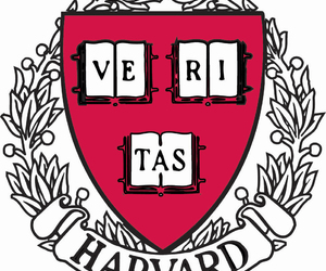 college, fact, and harvard image