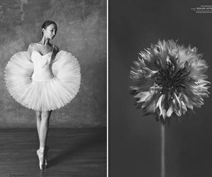 art, dancer, and flower image