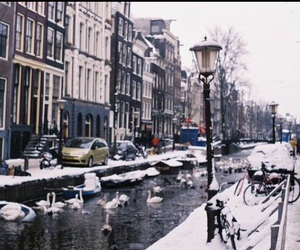 amsterdam, beautiful, and photography image