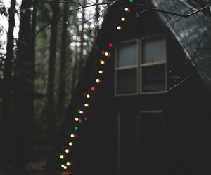 light, forest, and house image