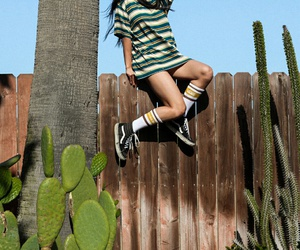 girl, cactus, and vans image