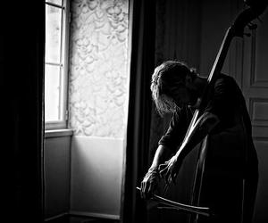 double bass image