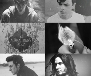aesthetic, black and white, and harry potter image