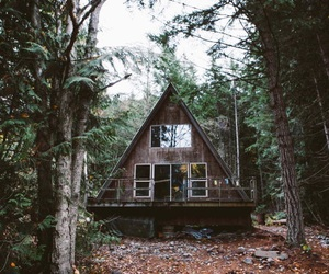 house, architecture, and forest image