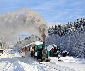 adventures, train, and slovensko image