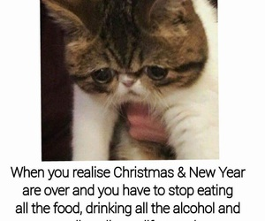 funny, new year, and sad image
