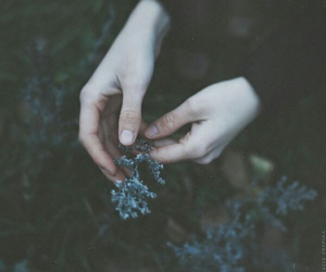 hands, flowers, and dark image