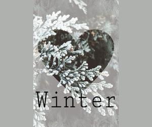 albero, neve, and snow image