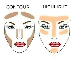 chin, contour, and face image
