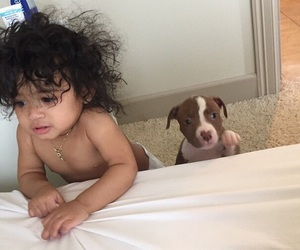 baby, dog, and chris brown image