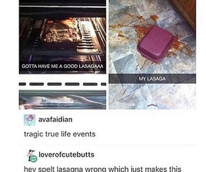 funny, tumblr post, and food image