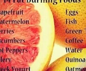 fat burning foods image