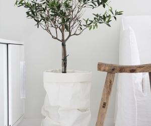 garden, indoor, and indoor garden image