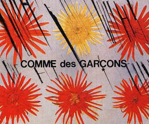 comme des garcons and fashion image