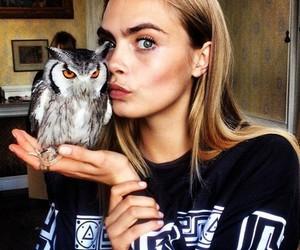 cara delevingne, model, and owl image