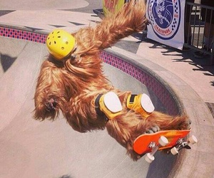 chewbacca, star wars, and funny image