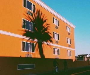 orange, aesthetic, and palm image