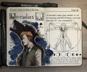 harry potter, werewolf, and art image
