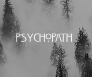 psychopath, ahs, and american horror story image
