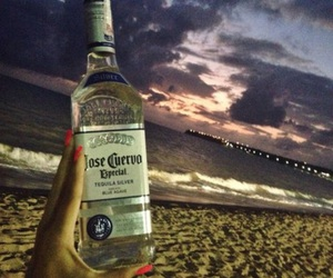 beach, drink, and tequila image