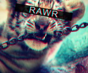 tiger, rawr, and animal image