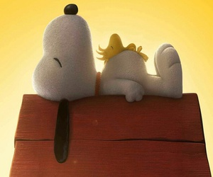 snoopy sonne image