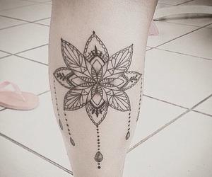 beautiful, brasil, and flores image