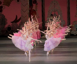 ballerinas, ballet, and the nutcracker image