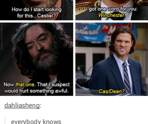 compilation, tumblr, and destiel image