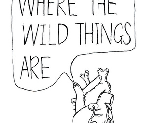heart, wild, and drawing image