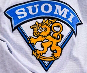 finland, finnish, and lion image