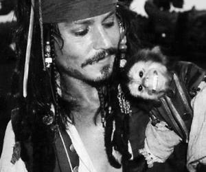 johnny depp, monkey, and jack sparrow image