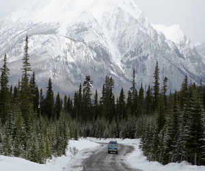 car, winter, and forest image