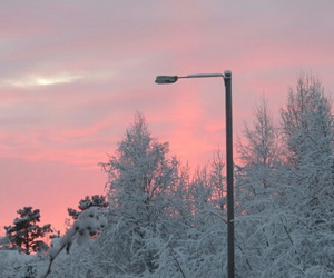 winter, pink, and snow image