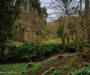 decay, derelict, and scotland image