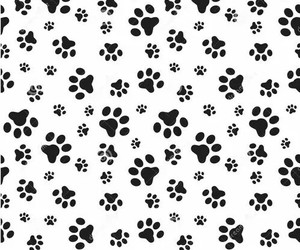 black and white, dogs, and wallpaper image
