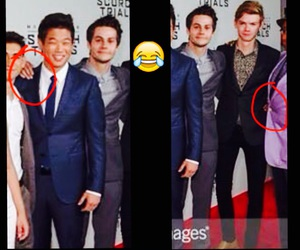 newtmas and dylmas image