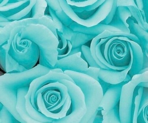 blue, pattern, and flower image