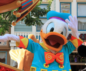 disney, donald, and donald duck image