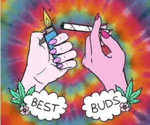 weed, smoke, and bud image