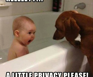 baby, funny, and dog image