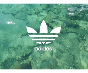 adidas, lovely, and photography image